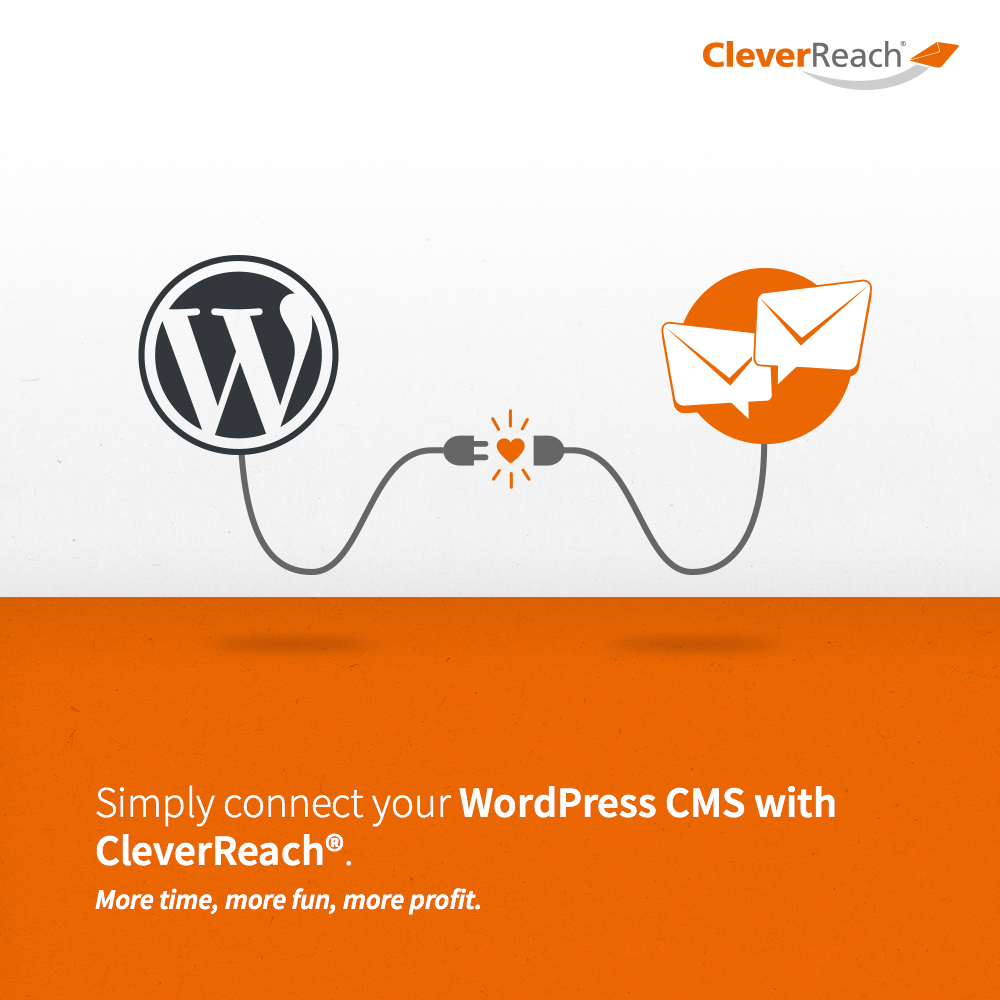 screenshot: simply connect wordpress and cleverreach® with your wordpress account